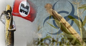 Is-The-End-of-Monsanto-Near-Prop-37-Succeeding-as-Nations-Ban-GMO-Crops