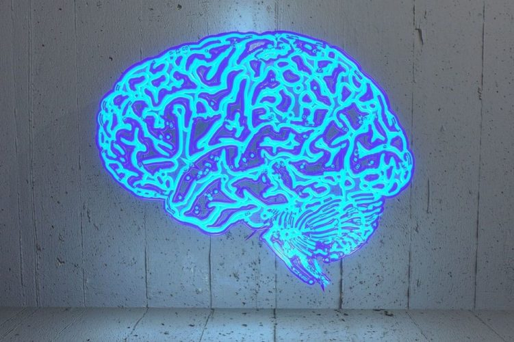 Brain tv decreases IQ