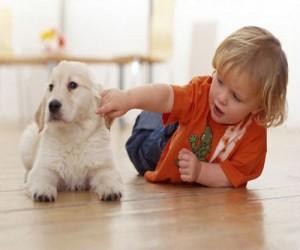 dog_and_toddler_4orkj