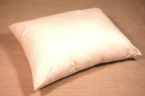 Organic Kapoc Pillow EndAllDisease