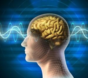 Brainwaves - EndAllDisease