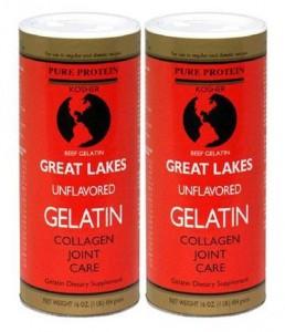 Gelatin 2 pack - EndAllDisease