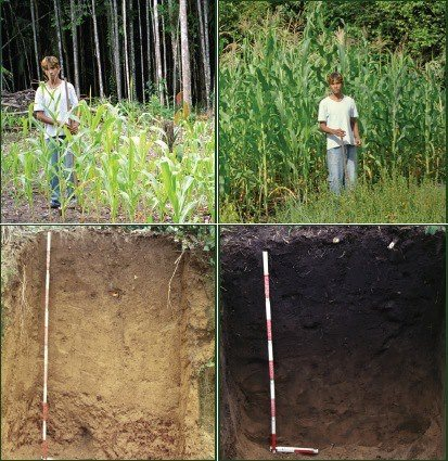 Before and After Biochar - EndAllDisease