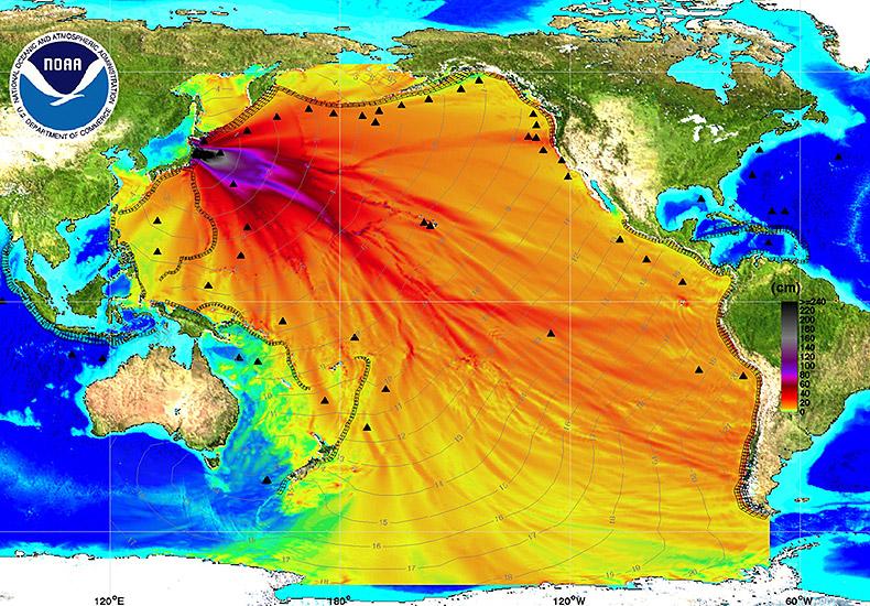 Fukushima Fallout - EndAllDisease