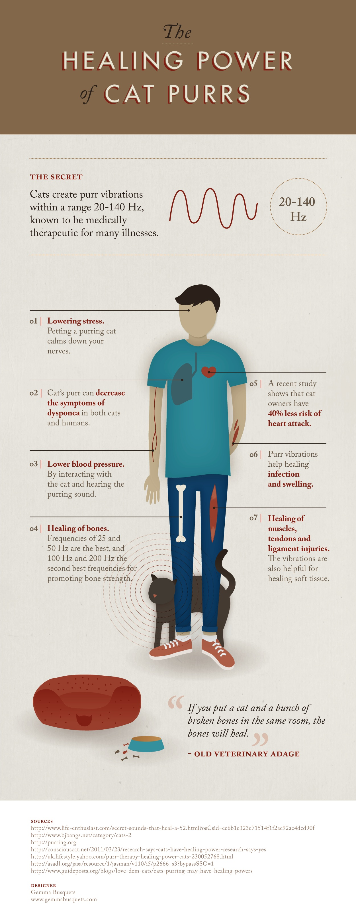 The Healing Power of Cat Purrs - EndAllDisease