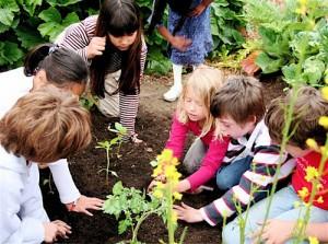 school-garden - EndAllDisease