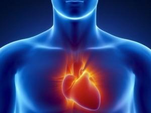 Heart Rate Variability Study EMF - EndAllDisease