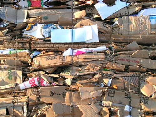cardboard Trash - EndAllDisease