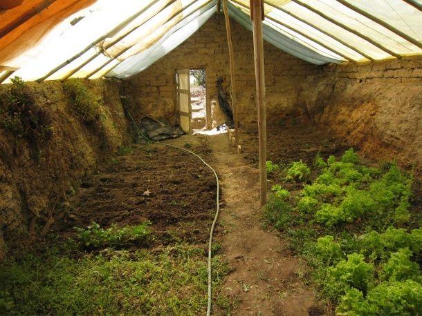 underground greenhouse walpini