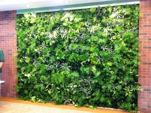 Green bronx machine wall