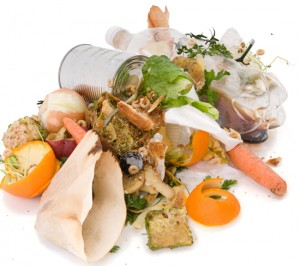 food-waste-shot1