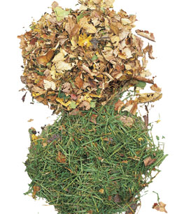 grass clippings and leaves