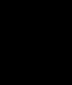 apple_black_silhouette