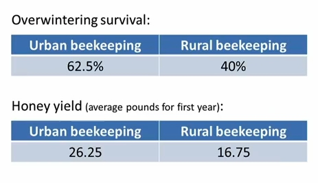 Bee survival rates - EndAllDisease