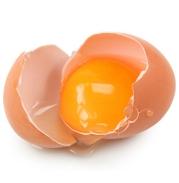Eggs - EndAllDisease