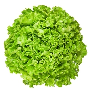 Vegetable Greens - EndAllDisease