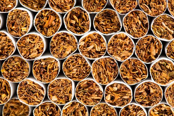 cigarettes - EndAllDisease