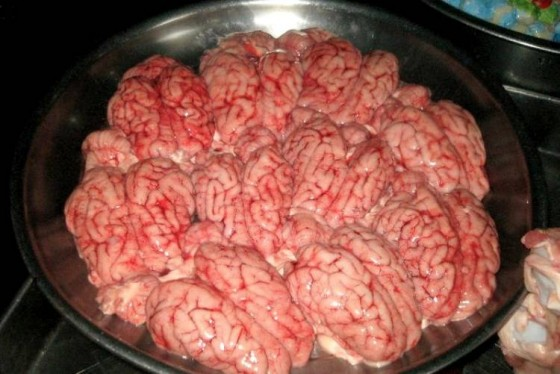 fried-brain-sandwich-2-560x374