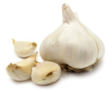 Garlicclove