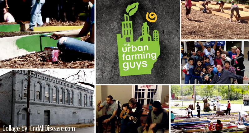 Urban Farming Guys - Endalldisease collage