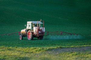 herbicide glyphosate kills