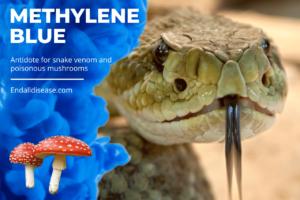 Methylene Blue Antidote for Snake Venom (1)